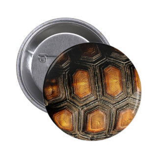 Redfoot Tortoise Shell 6 Cm Round Badge