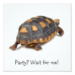 Redfoot Tortoise Walking Personalized Invitation