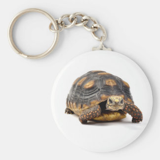 Redfoot Turtle Gifts Key Ring