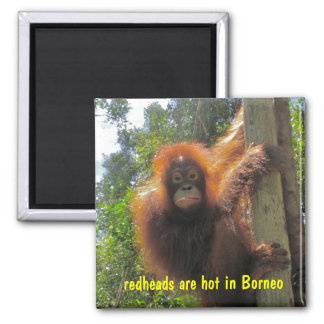 Redheads Are Hot Humor Square Magnet