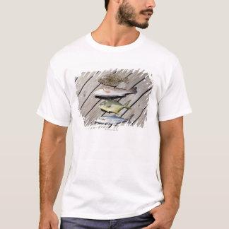 Redish Pompono T-Shirt