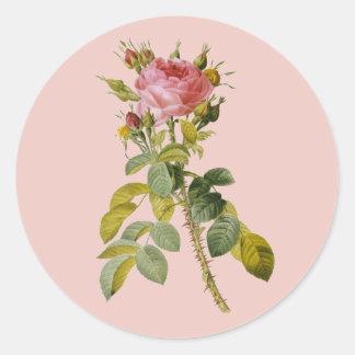 Redoute English Rose Single Stem Classic Round Sticker