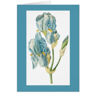 Redoute Iris Notecard Stationery Note Card