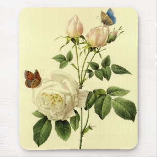 Redoute Print: 'Bengal Rose Hymanee' Mouse Mat