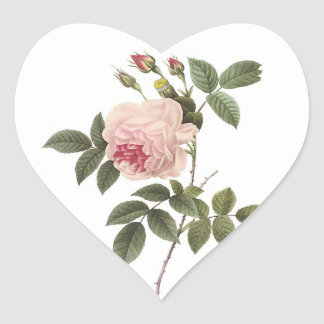 Redoute Rose 2 Heart Stickers