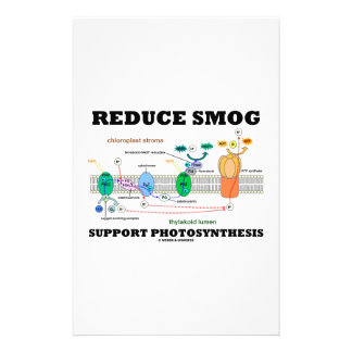 Reduce Smog Support Photosynthesis Custom Stationery