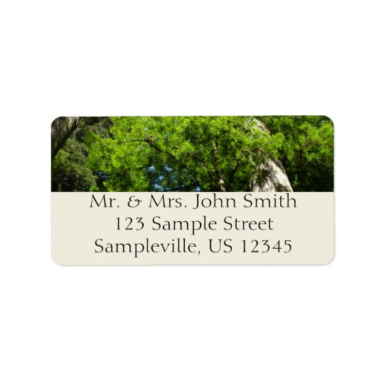 Redwood Boughs in Redwood National Park Address Label