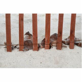 redwood fence sea grape leaves sand image photo sculptures