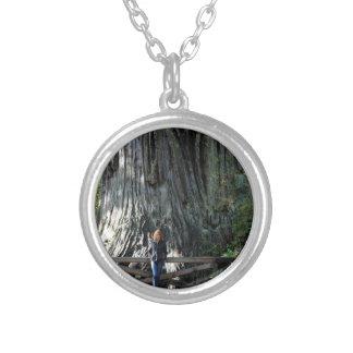Redwood Forest Pendant