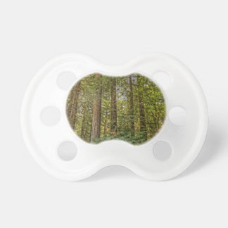 Redwood Grove Baby Pacifiers