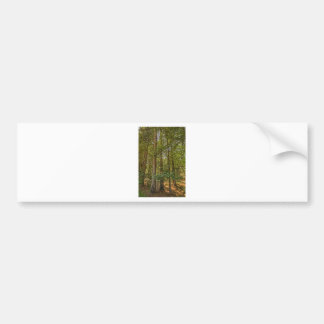 Redwood Grove Bumper Stickers
