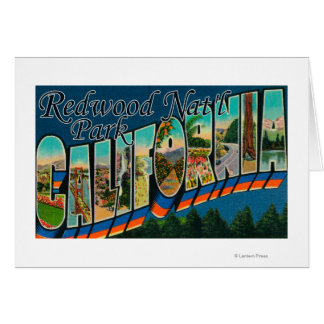 Redwood Nat'l Park, California Cards