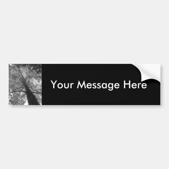 Redwood Tree Black and White Bumper Sticker