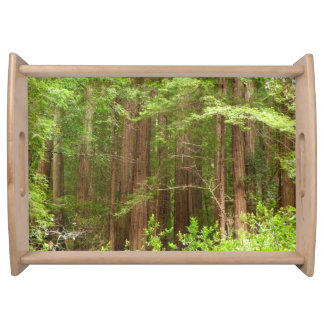 Redwood Trees at Muir Woods National Monument Serving Tray