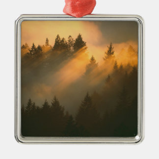 Redwood trees in coastal fog, Marin County, Christmas Tree Ornament