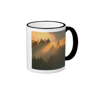 Redwood trees in coastal fog, Marin County, Ringer Mug