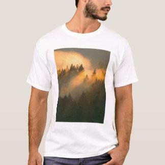 Redwood trees in coastal fog, Marin County, T-Shirt