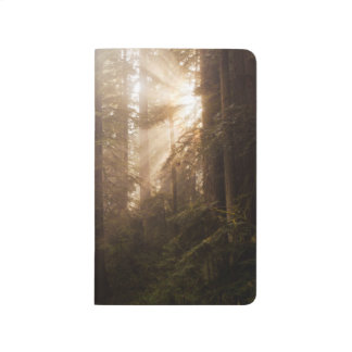 Redwood Trees in Morning Fog with Sunrays Journal