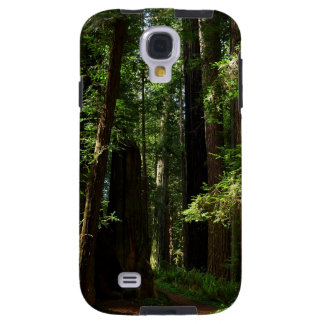 Redwoods and Ferns at Redwood National Park Galaxy S4 Case