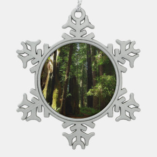 Redwoods and Ferns at Redwood National Park Pewter Snowflake Decoration