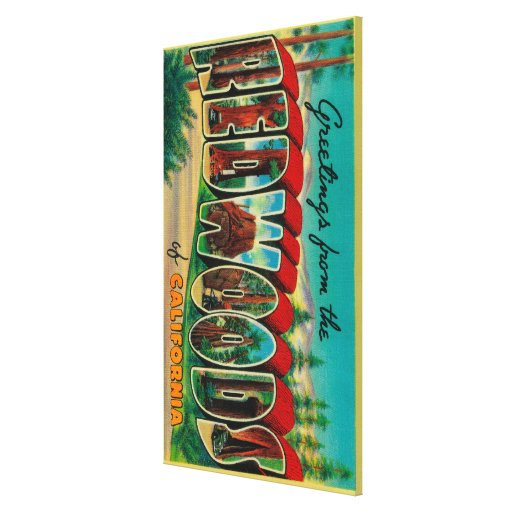 Redwoods, California - Large Letter Scenes Gallery Wrapped Canvas