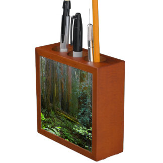 Redwoods In Muir Woods National Park Desk Organiser