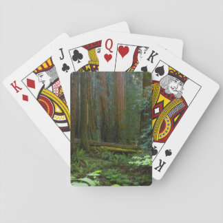 Redwoods In Muir Woods National Park Playing Cards