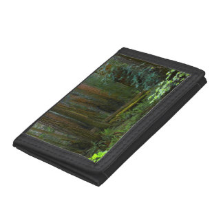 Redwoods In Muir Woods National Park Tri-fold Wallet