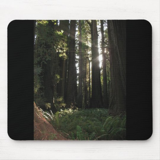 Redwoods Mouse Mat