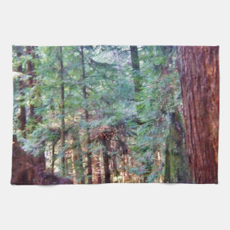 Redwoods Series #2: Through the Trees Tea Towel