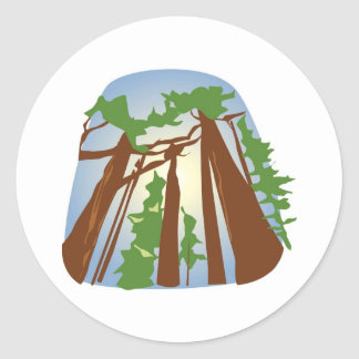 Redwoods with Sunshine Stickers