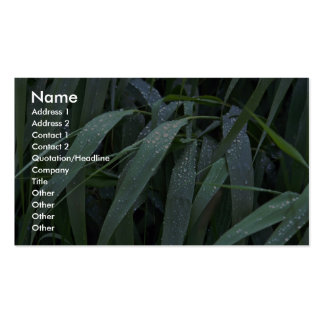 Reed during rain business card