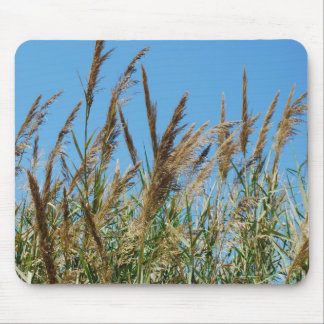 Reed grass on a lake mouse mat