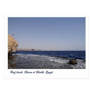Reef beach Sharm el Sheikh Egypt Postcard
