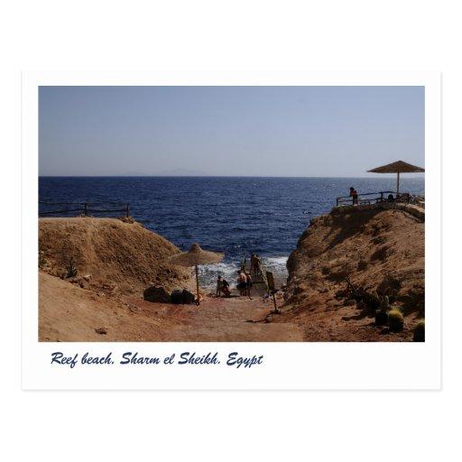 Reef beach, Sharm el Sheikh, Egypt Postcards