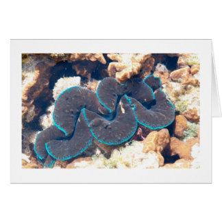 Reef Creature Card