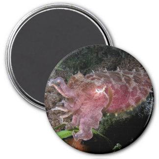Reef_cuttlefish 7.5 Cm Round Magnet