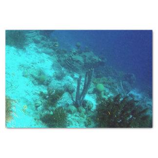 Reef Edge Tissue Paper