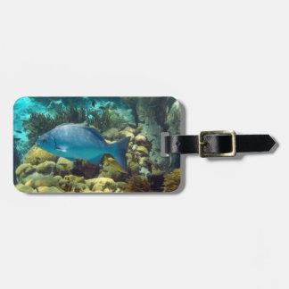 Reef Fish Custom Bag Tag