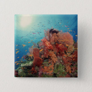 Reef scenic of hard corals , soft corals 2 15 cm square badge