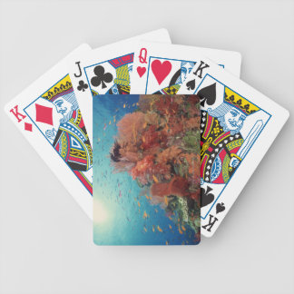 Reef scenic of hard corals , soft corals 2 bicycle playing cards