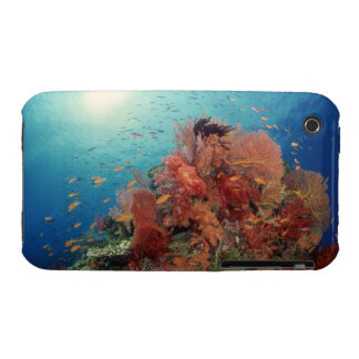 Reef scenic of hard corals , soft corals 2 Case-Mate iPhone 3 cases