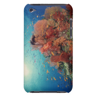 Reef scenic of hard corals , soft corals 2 Case-Mate iPod touch case