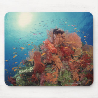 Reef scenic of hard corals , soft corals 2 mouse mat