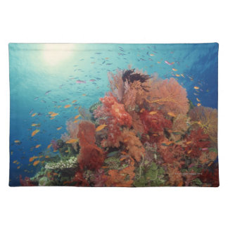 Reef scenic of hard corals , soft corals 2 placemat