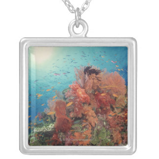 Reef scenic of hard corals , soft corals 2 silver plated necklace