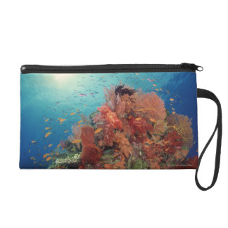 Reef scenic of hard corals , soft corals 2 wristlet clutch