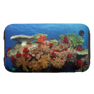 Reef scenic of hard corals soft corals tough iPhone 3 cases