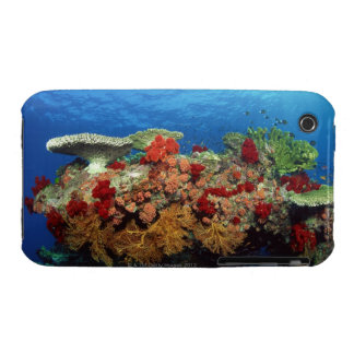 Reef scenic of hard corals , soft corals iPhone 3 case