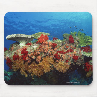 Reef scenic of hard corals , soft corals mouse mat